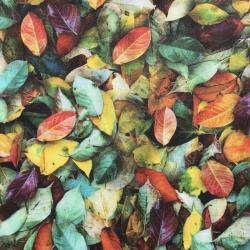 Herfstbladeren, Hoffman Fabrics