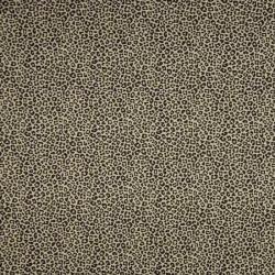 luipaard leopard